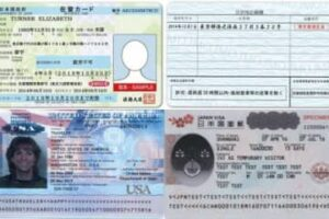 在留カード・パスポート写真